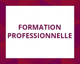 Logo de la formation professionnelle
