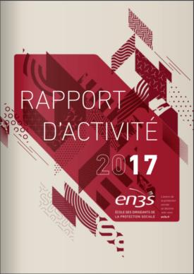 rapport activité EN3S 2017